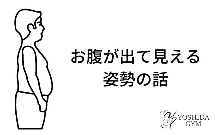 お腹と【姿勢】の関係 (1)