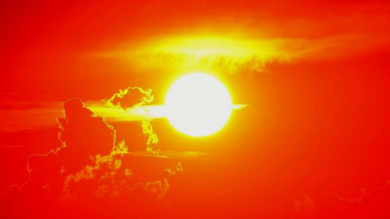太陽を浴びないとビタミンD不足に。在宅勤務が多くなっているから気を付けたい日光浴のすすめ。